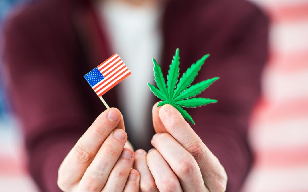 Big Night for Marijuana Legalization