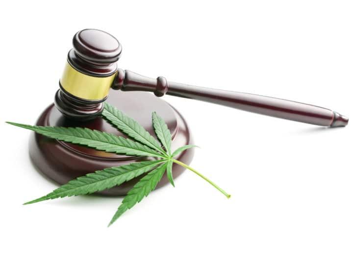 Gavel with Marijuana Leaf